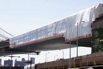 Bridge Project NYSSPCA